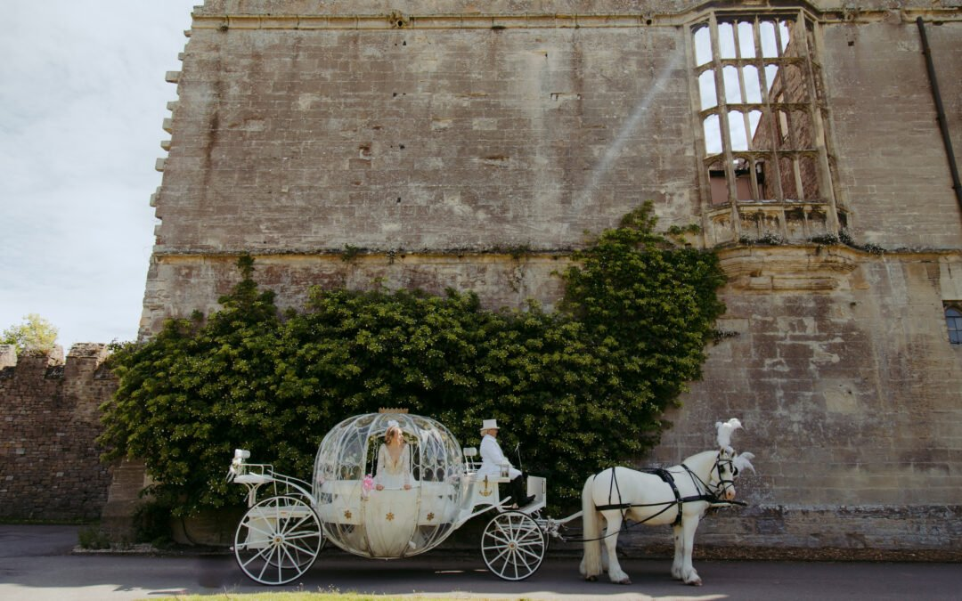Dream Come True: The Perfect Fairytale Wedding